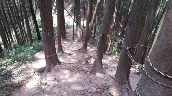 青梅丘陵急斜面