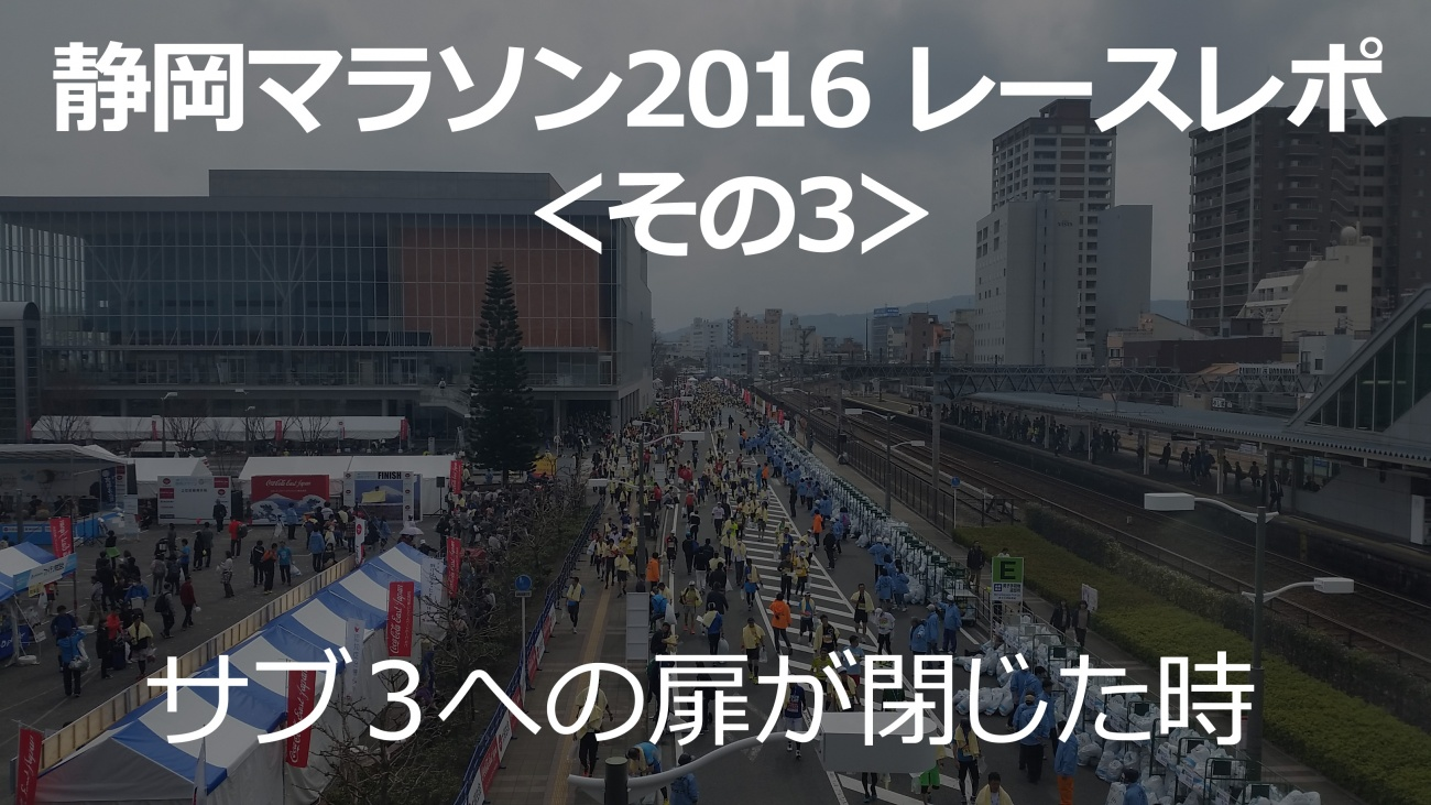 shizuokamarathon_.3jpg