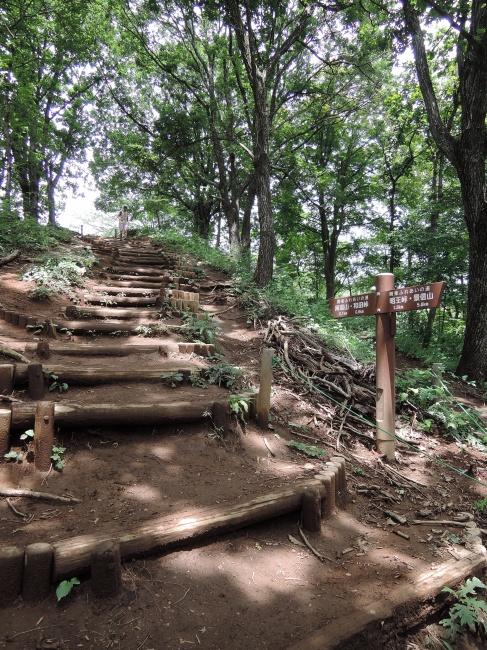 陣場山手前の階段